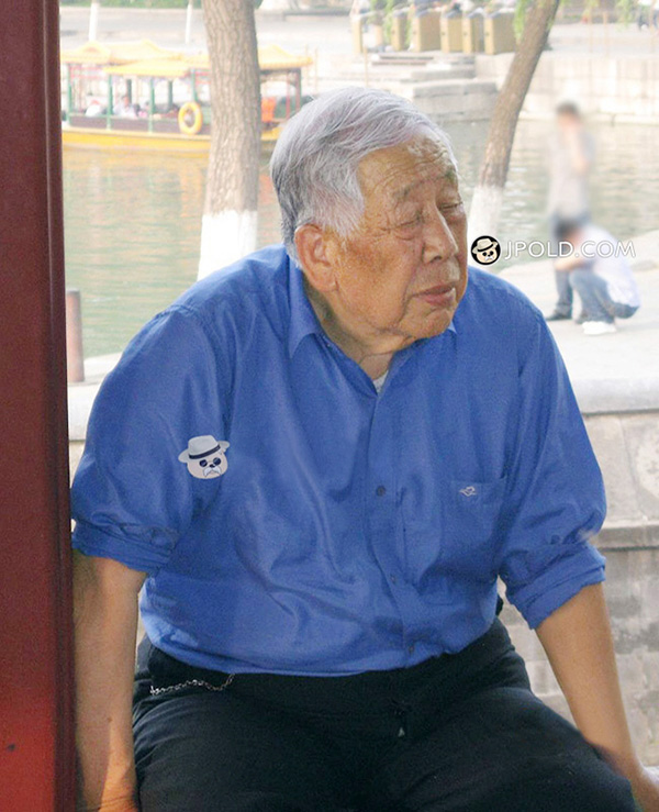 Silver hair old man in blue shirt rest in the arbor
